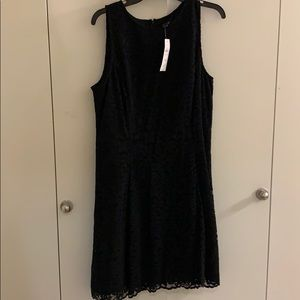 Ann Taylor Lace Fit and Flare Dress New With Tags